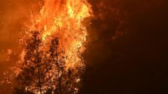 VIDEO: Wildfires Near Sacramento Burn Nearly 90 Square Miles