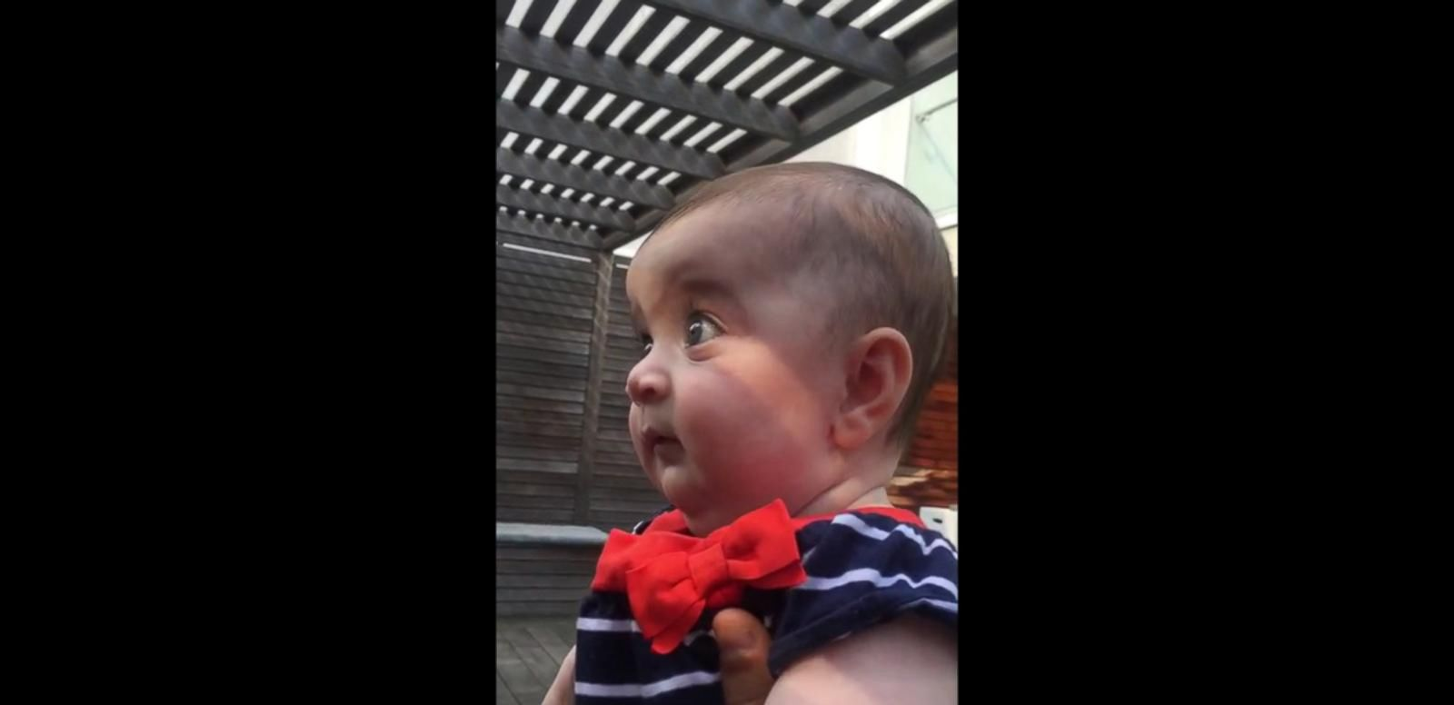 VIDEO: Baby's Mind is Completely Blown Learning About the Miracle of Life