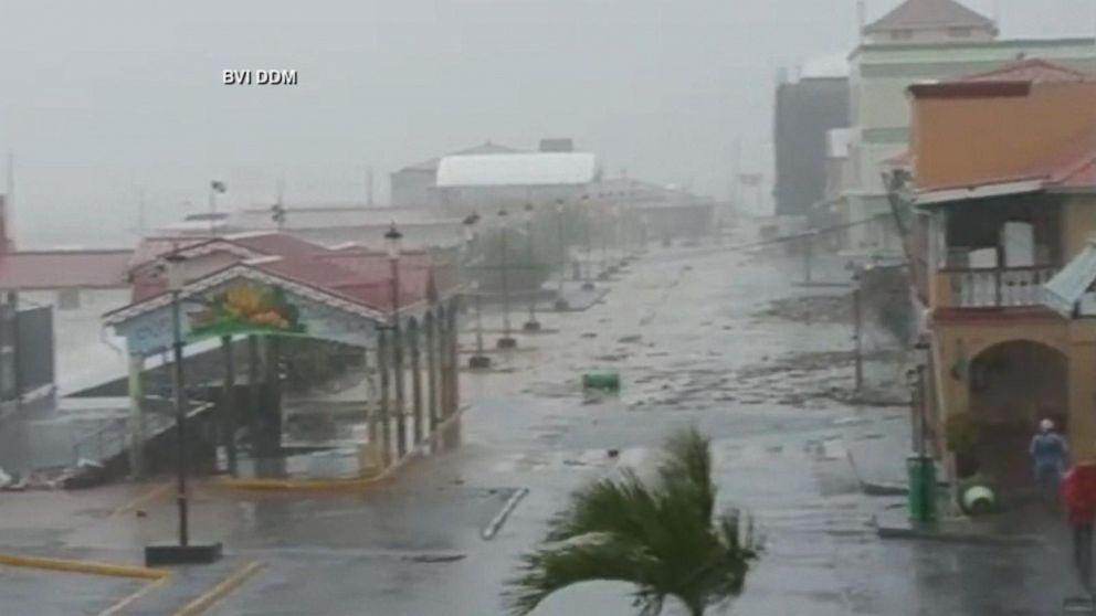 Dominica Erika Damage