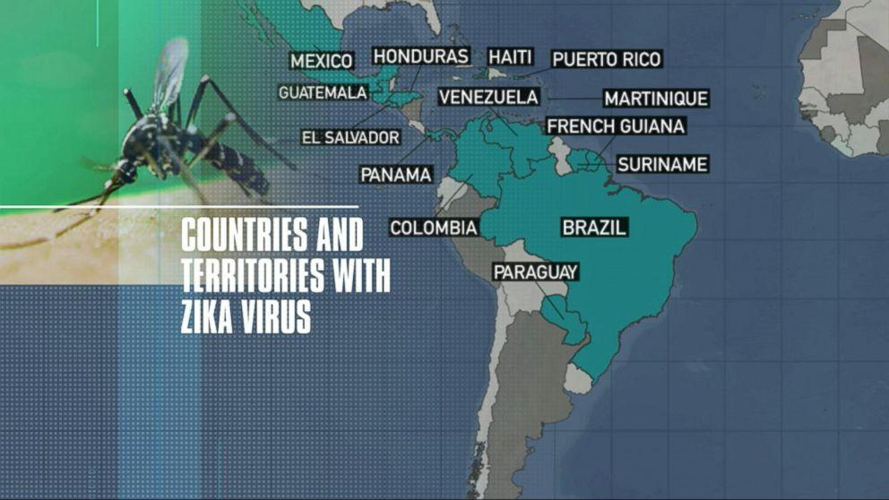 Good Morning America Zika Virus : Travel warning expected from the cdc over zika virus