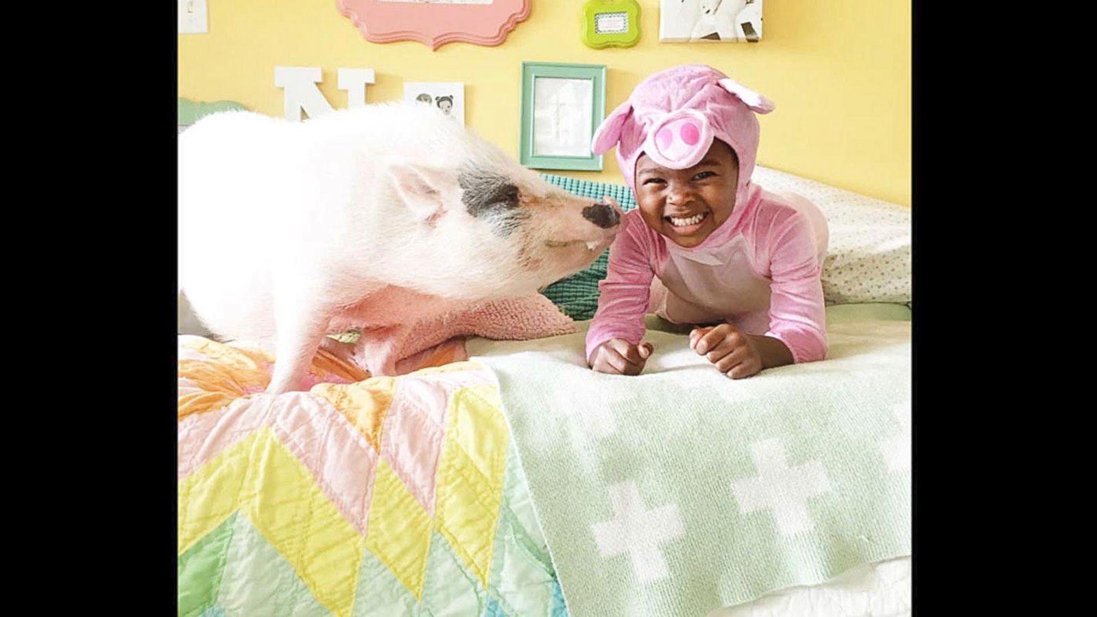 VIDEO: Kids Dress Up for Halloween With Their Fluffy Farm Animals in Precious Photos