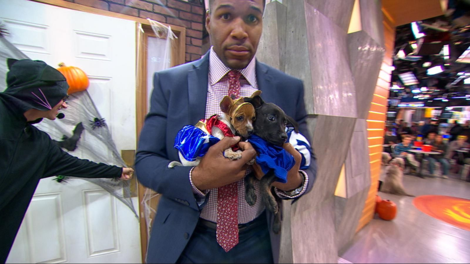 VIDEO: 'Mission PAWsible': 'GMA' Launches Doggie Adopt-a-Thon