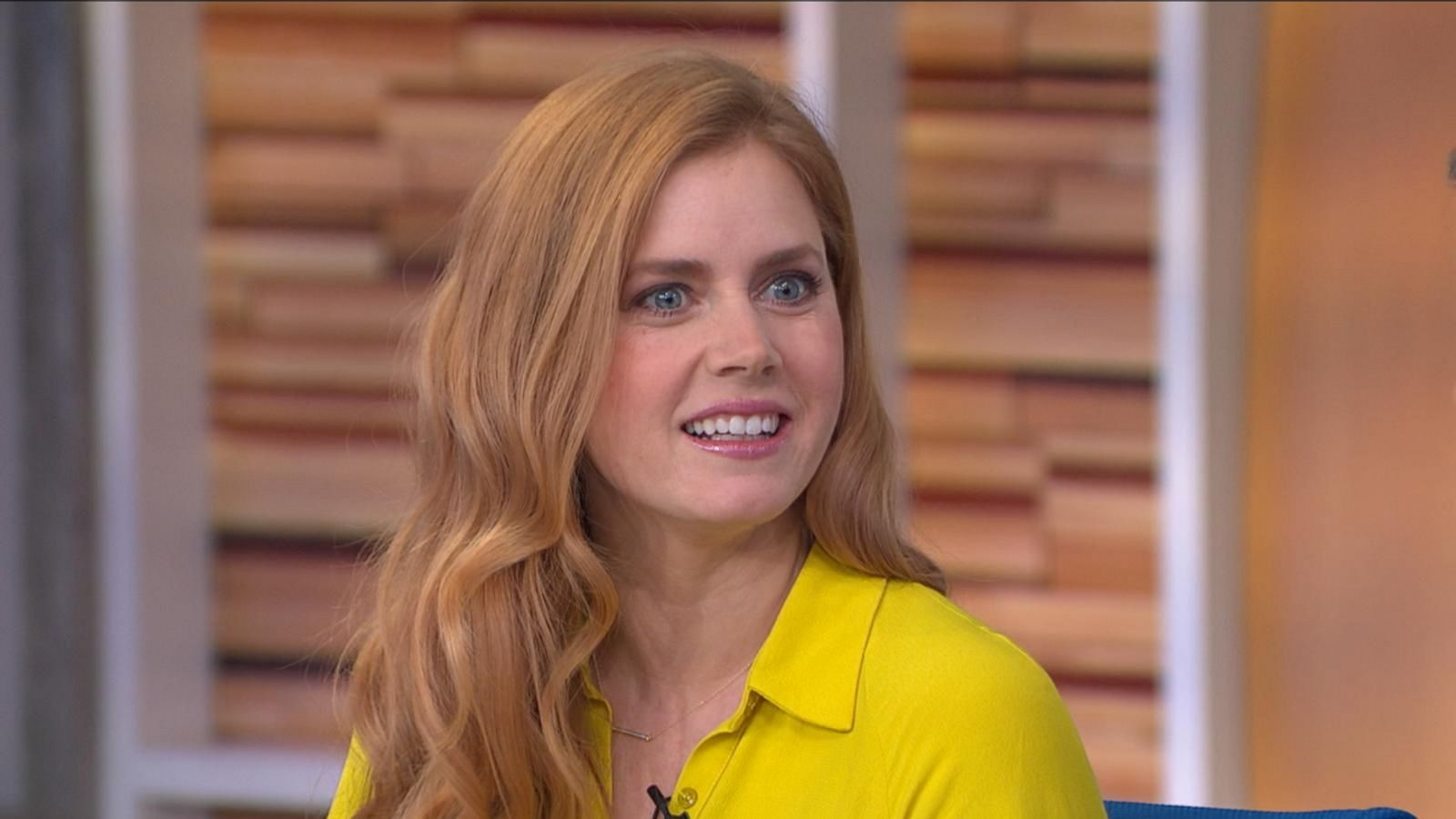 Amy Adams Talks About Her 6-Year-Old Daughter's Crushes on Her Co ...