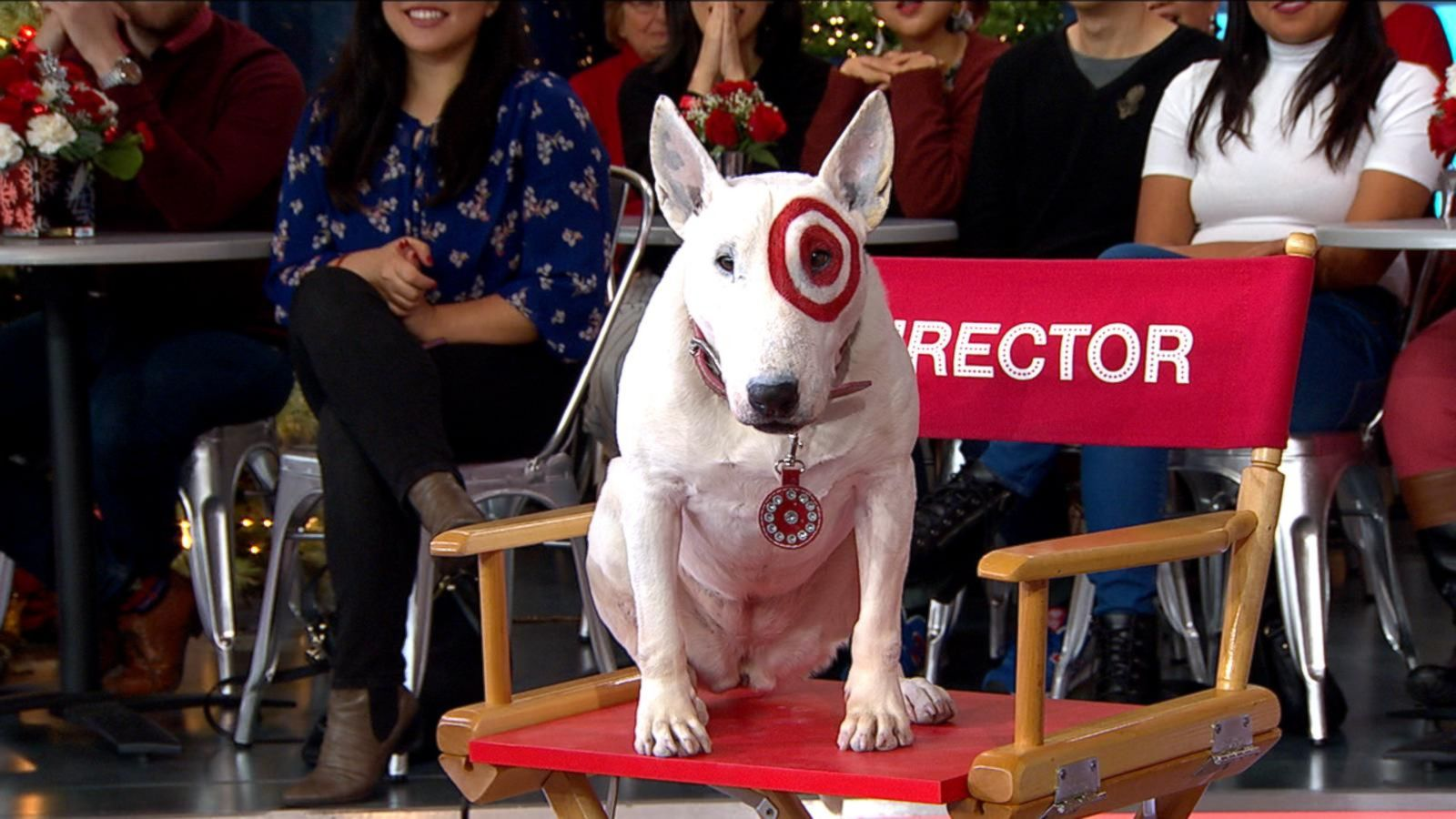 VIDEO: 'Bullseye,' the Target Dog, Appears Live in Times Square