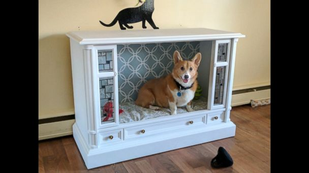 VIDEO: Jonathan and Lisa, of Havre de Grace, Maryland, turned a retro TV into a chic doggy paradise with stained glass windows.