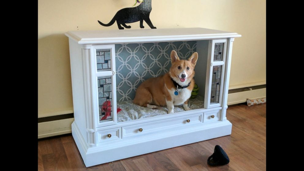 WATCH:  Crafty Corgi owners transform retro TV into chic dog bed