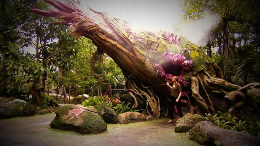 VIDEO: Inside Pandora: The World of Avatar at Disney World