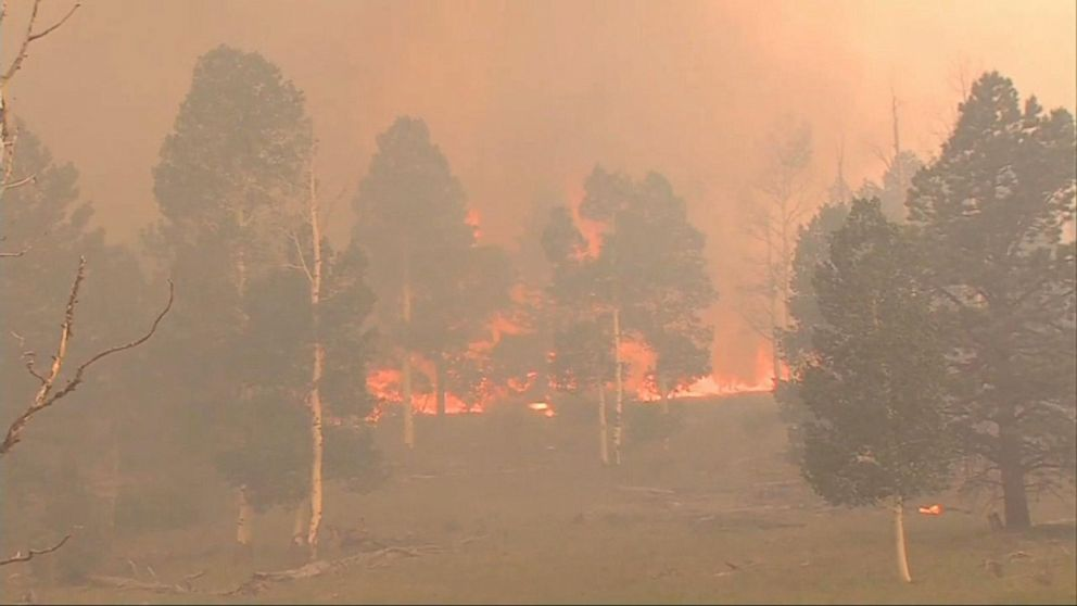 WATCH:  Record-high heat spawns wildfires across the West