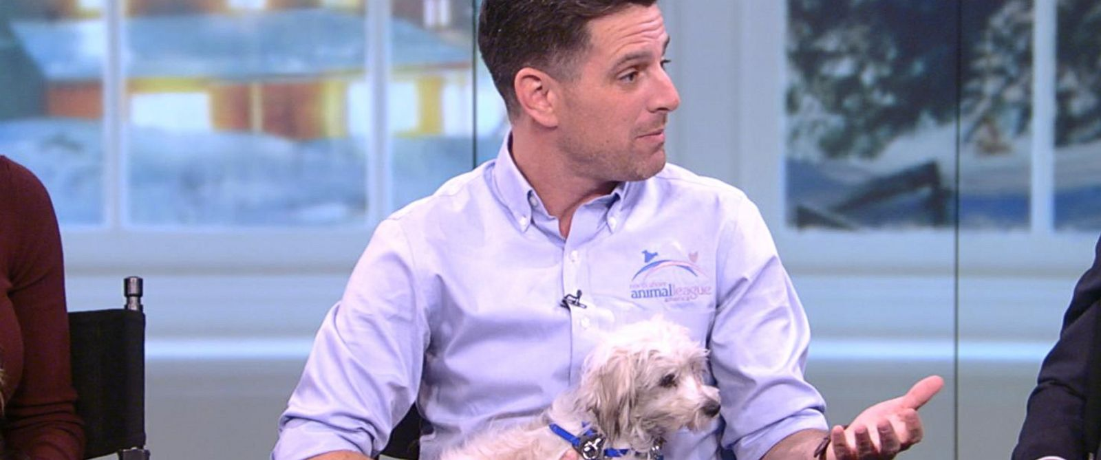 VIDEO: Things you need to know before adopting a family pet
