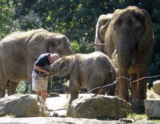 Pittsburgh Zoo Elephant Trainers