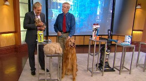 VIDEO: Marty Becker discusses shedding solutions for your pets.