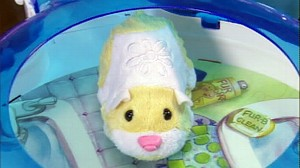 VIDEO: Consumer group says Zhu Zhu Pets may be unsafe for children.