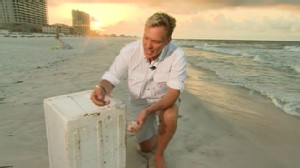 VIDEO: GMAs Sam Champion finds oily sheens in Pensacola, Florida.