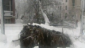 VIDEO: Winter Storm Aftermath