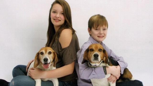 VIDEO: Families separated from their beloved pets use social media to find their furry friends.