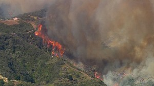 More than 200 acres of land burned yesterday as winds carried the fire.