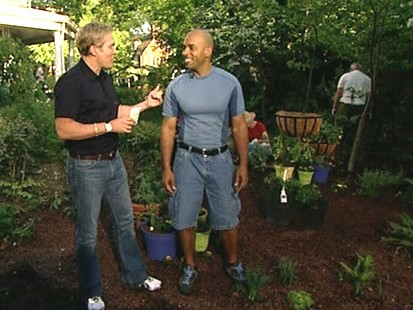 VIDEO: Vegetable gardens are a recession friendly way to cut costs and stay healthy.