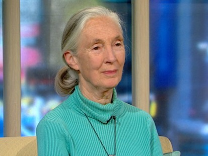 VIDEO: Author and environmentalist Jane Goodall talks about her new book.