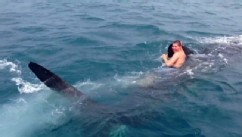 VIDEO: A video of a teen grabbing on to whale shark's dorsal fin and going for a ride has gone viral.