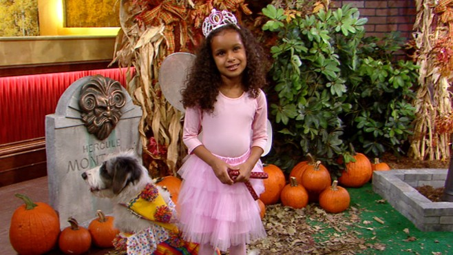 VIDEO: Outfit the whole family, including pets, with great homemade costumes.