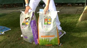 VIDEO: Protect Your Lawn With Eco-Friendly Fertilizer