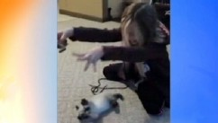 VIDEO: Cat Mimics Girl, Baby Snuggles Kitten
