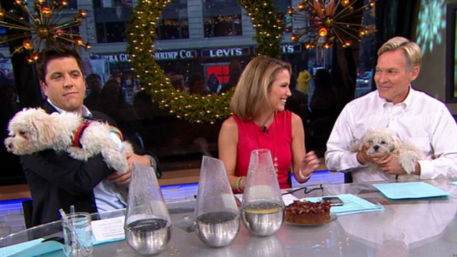 Gma Live 12 11 12 Good Morning America S Live Show On