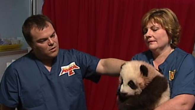 VIDEO: The voice behind the animated Kung Fu Panda goes to the Atlanta Zoo.