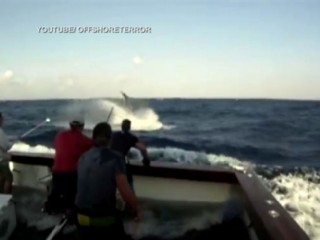 Watch: Giant Black Marlin Jumps on Boat in YouTube Video