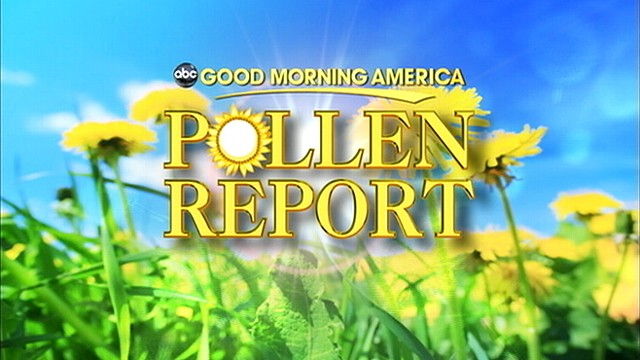 VIDEO: 'Good Morning America' Pollen Report