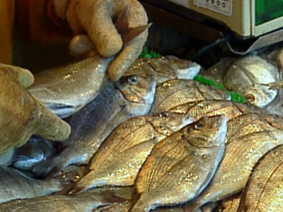 VIDEO: Fish that Contain High and Low Amounts of Mercury
