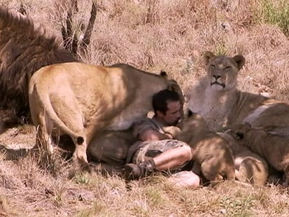 VIDEO: Kevin Richardson and Dave Salmoni embark on their own missions to save lions.