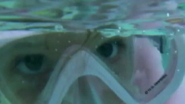 VIDEO: Swimming with the dangerous creatures was the parents idea.