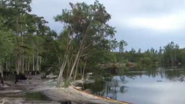 VIDEO: Louisiana Sinkhole Swallows Trees in Seconds