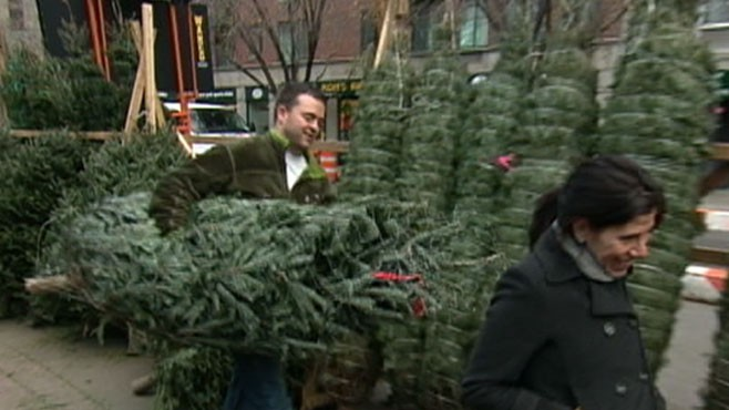 VIDEO: Online Christmas Trees