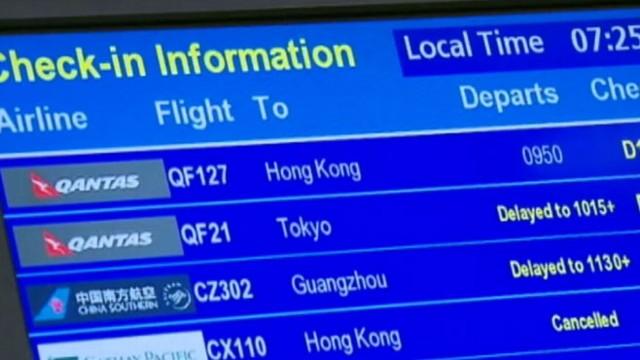 VIDEO: Eight-inch Mandarin Rat Snake was found on a Qantas jet before passengers began boarding.