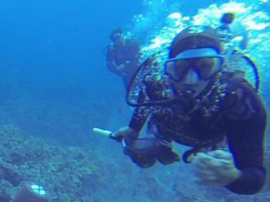 Underwater Assault Caught on Video In Hawaii