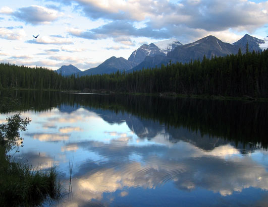 Weekend Window: Jasper, Alberta