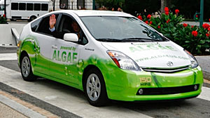 Photo: 150mpg Algae-Powered Toyota Prius