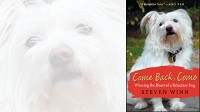 Come Back, Como: Winning the Heart of a Reluctant Dog by Steven Winn.
