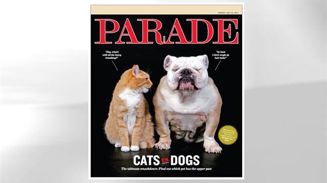 "PHOTO:""Cats Vs. Dogs"""