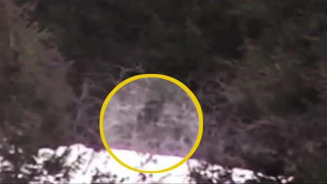 VIDEO: High school students filmed a possible Bigfoot walking through the forest.