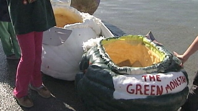 VIDEO: Annual Pumpkin Regatta draws huge crowds at Pumpkinfest in Maine.