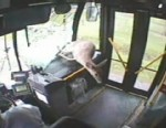 VIDEO: A deer in Pennsylvania flew through a moving bus's windshield and escaped with no one injured.