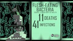 VIDEO: Health Warnings About Flesh-Eating Bacteria in Florida