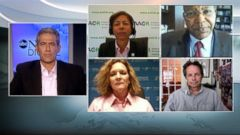 VIDEO: Experts Weigh in on the Progress of Cancer Research