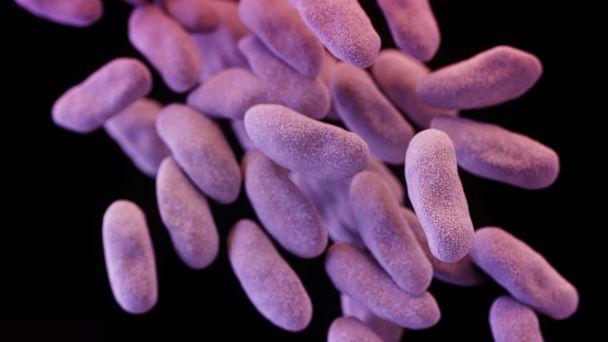 http://a.abcnews.com/images/Health/AP-bacteria-cf-170116_16x9_608.jpg