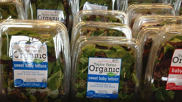 AP Taylor farms salads nt 130812 16x9 608 Farm Stops Salad Production Over Cyclospora Stomach Bug Outbreak