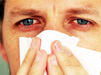 5 Secrets to Outsmart Your Allergies