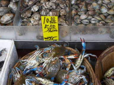Skin Infection Spreading Though NYC Seafood Markets